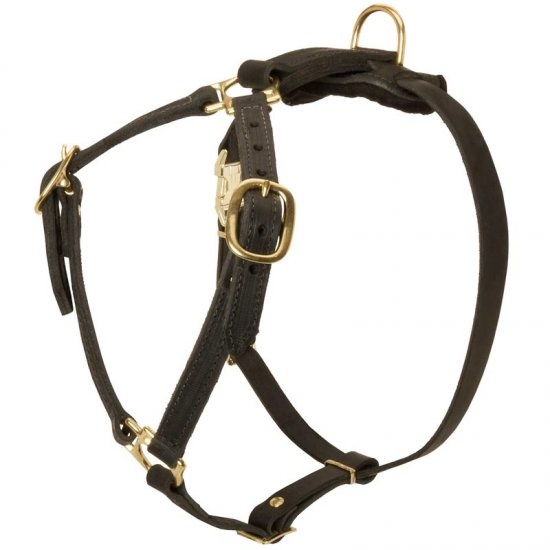 Y-Shaped Leather Doberman Harness for Tracking and Training