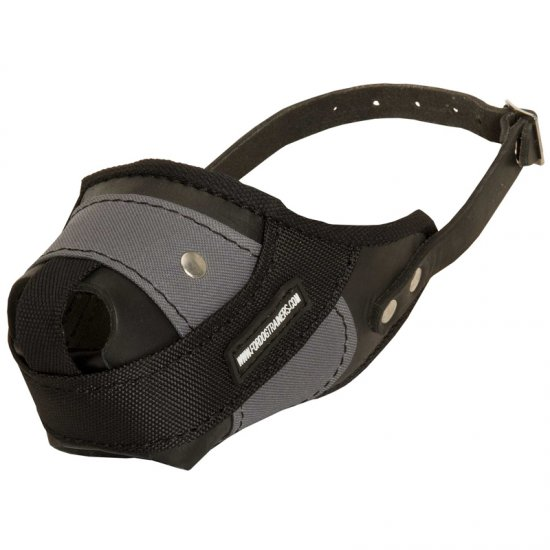 Protection Training Doberman Muzzle Made of Nylon and Leather