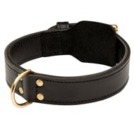 Training 2 Ply Leather Doberman Collar