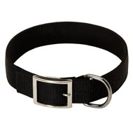 2 Ply Nylon Doberman Collar