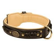 Doberman Leather Collar Braided