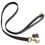 All Weather Nylon Doberman Leash for Walking and Training Activities