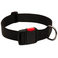 Any-Weather Nylon Doberman Collar With Quick Release Buckle for Training and Walking