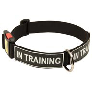 All Weather Nylon Doberman Collar with ID Patches