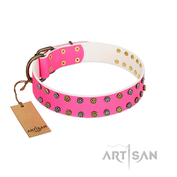 Top rate genuine leather collar with adornments for your canine