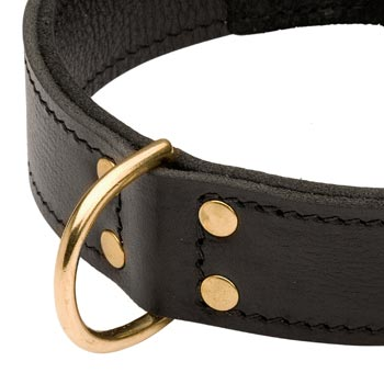 Brass D-ring Stitched to Leather Doberman Collar