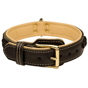 Doberman Decorated Leather Dog Collar