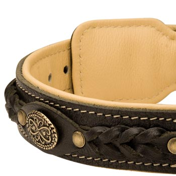 Leather Walking Fashion Collar for Doberman