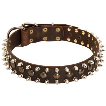 Doberman Leather Collar with Stylish Decoration