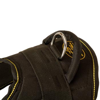 Heavy Duty Handle of Doberman Harness