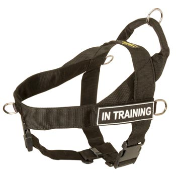 Doberman Nylon Harness with ID Patches