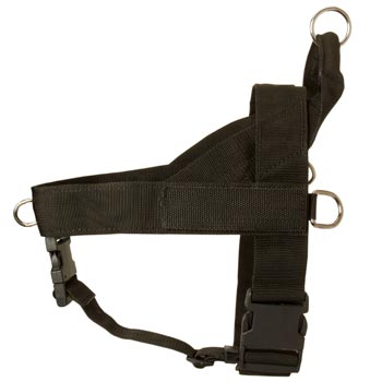 Doberman Harness Nylon for Comfy Walking