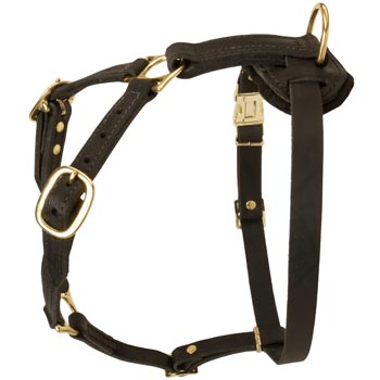 Tracking Leather Dog Harness for Doberman