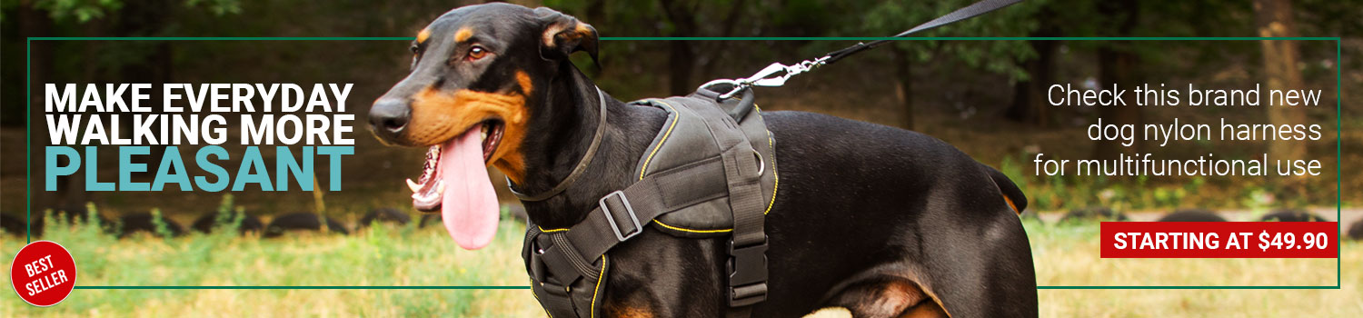Nylon harness with chest plate